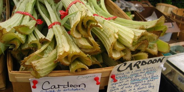 Cardoon Salad - Spain