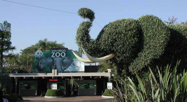 Top 7 Of The Largest Zoos In The World