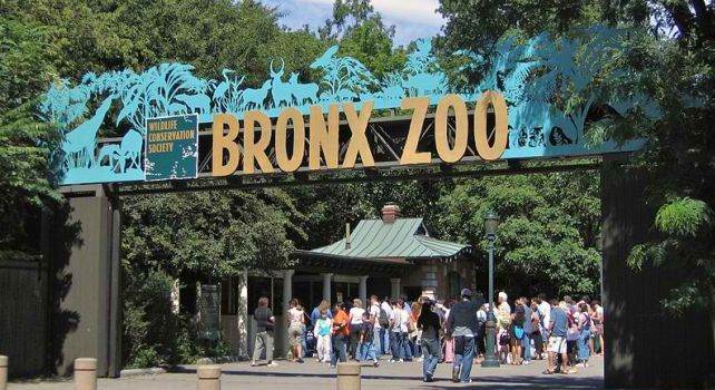 The Top 10 Largest Zoos Worldwide